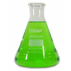 Erlenmeyer Flasks: 2L Clear Glass, Standard Rim 1 EA